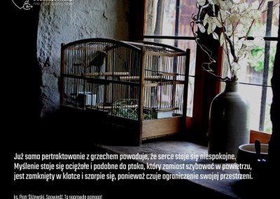 DOBRAspowiedz.pl 12 (1)